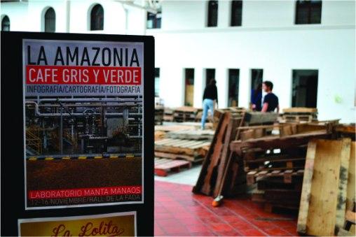 Amazonía_cafe gris y verde