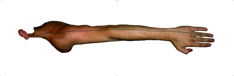 33-tatoo